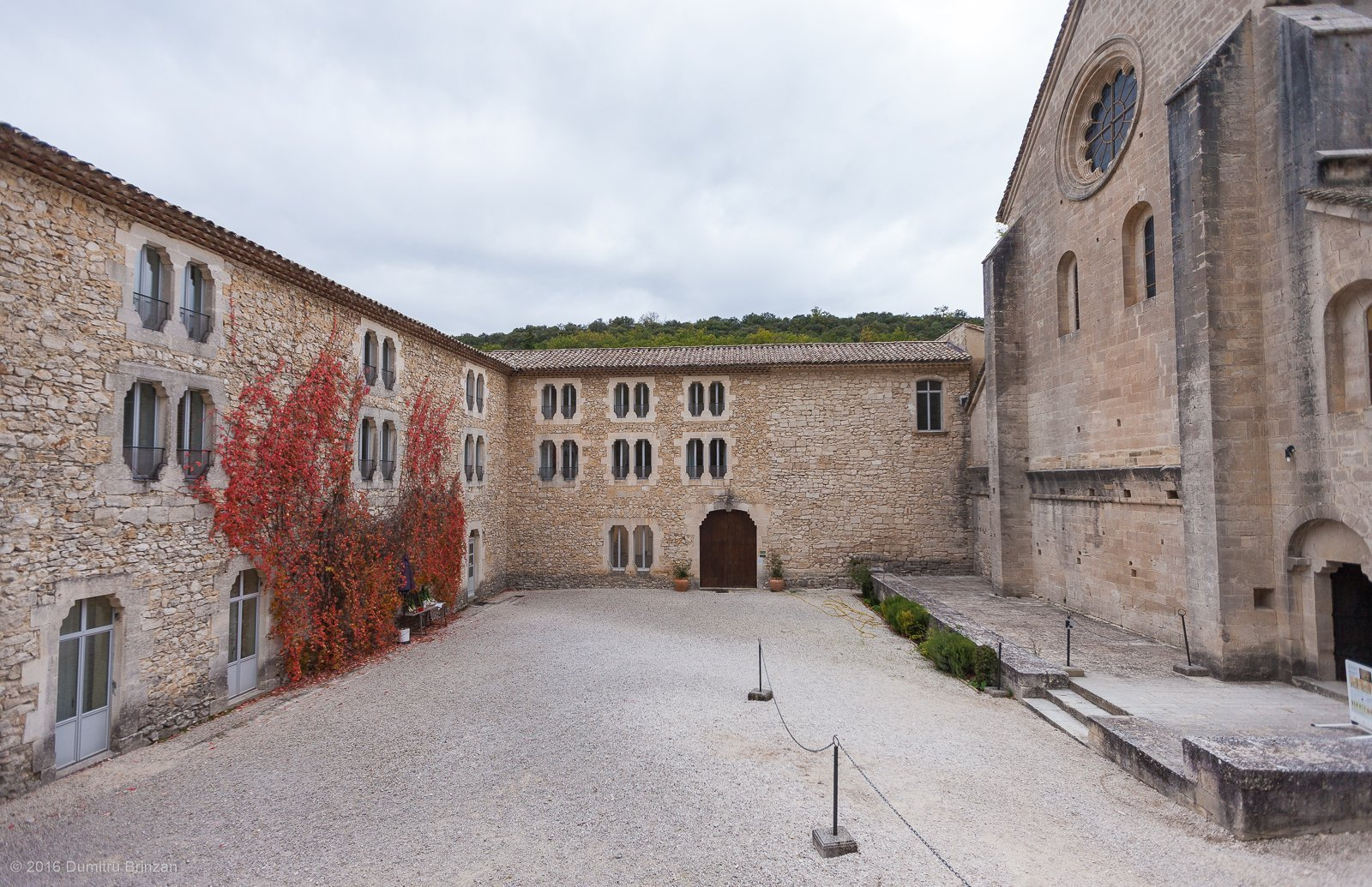 senanque-abbey-provence-france-11