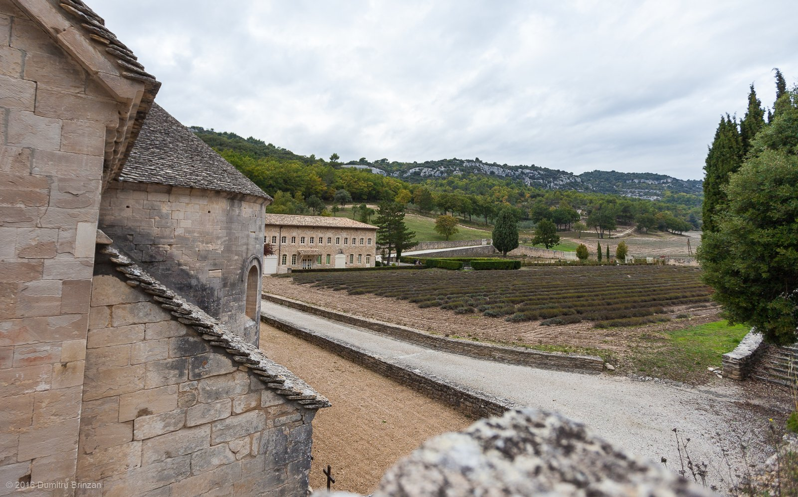 senanque-abbey-provence-france-16