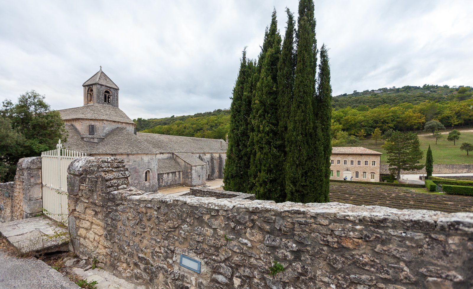 senanque-abbey-provence-france-17
