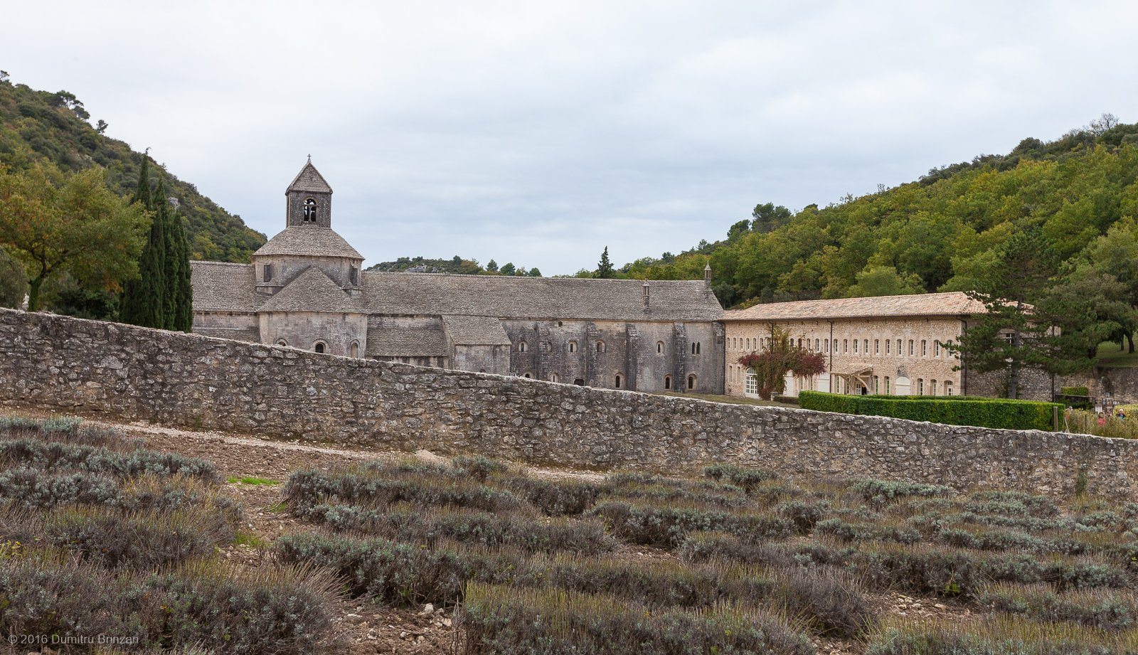 senanque-abbey-provence-france-4