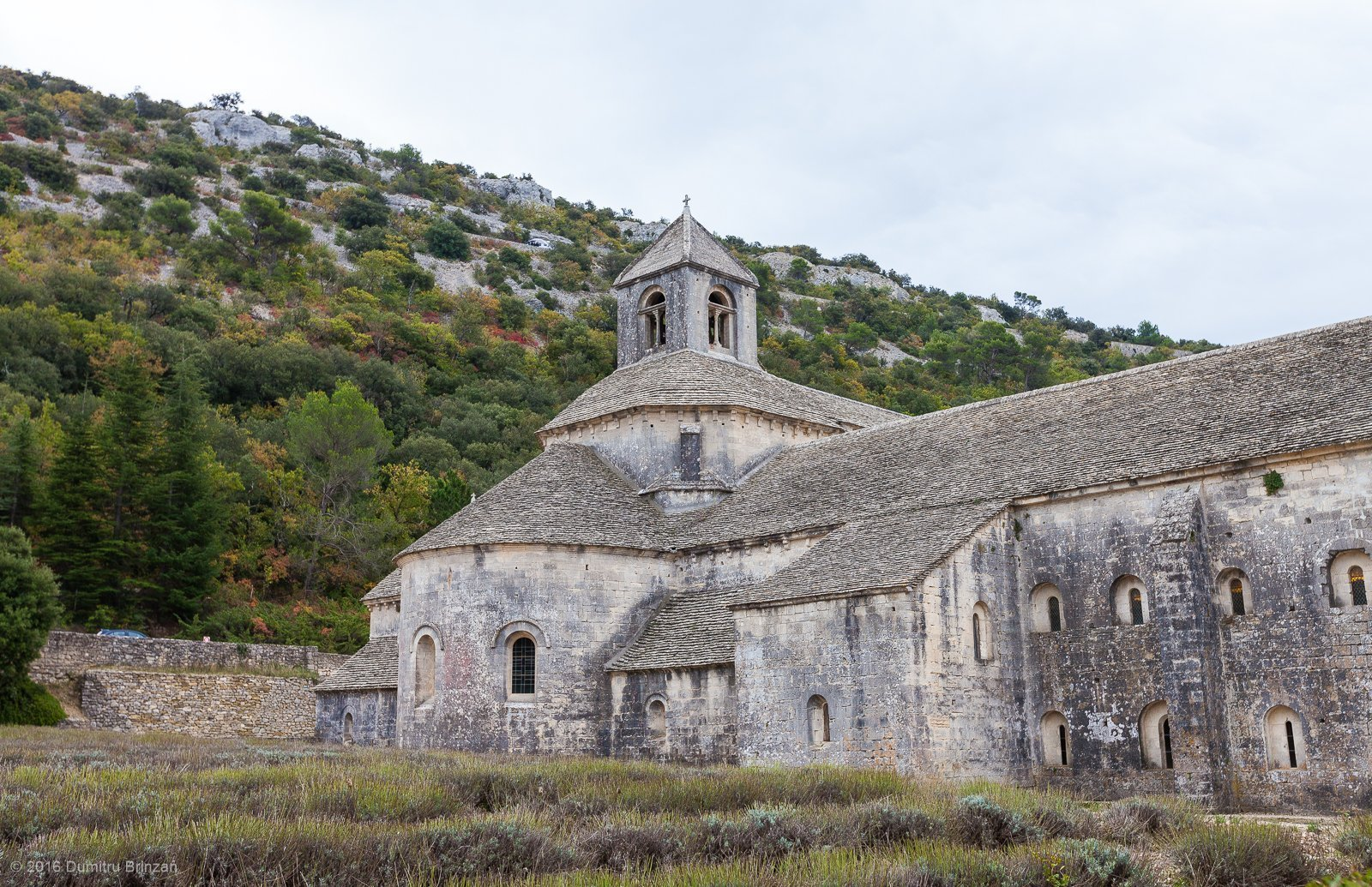 senanque-abbey-provence-france-5