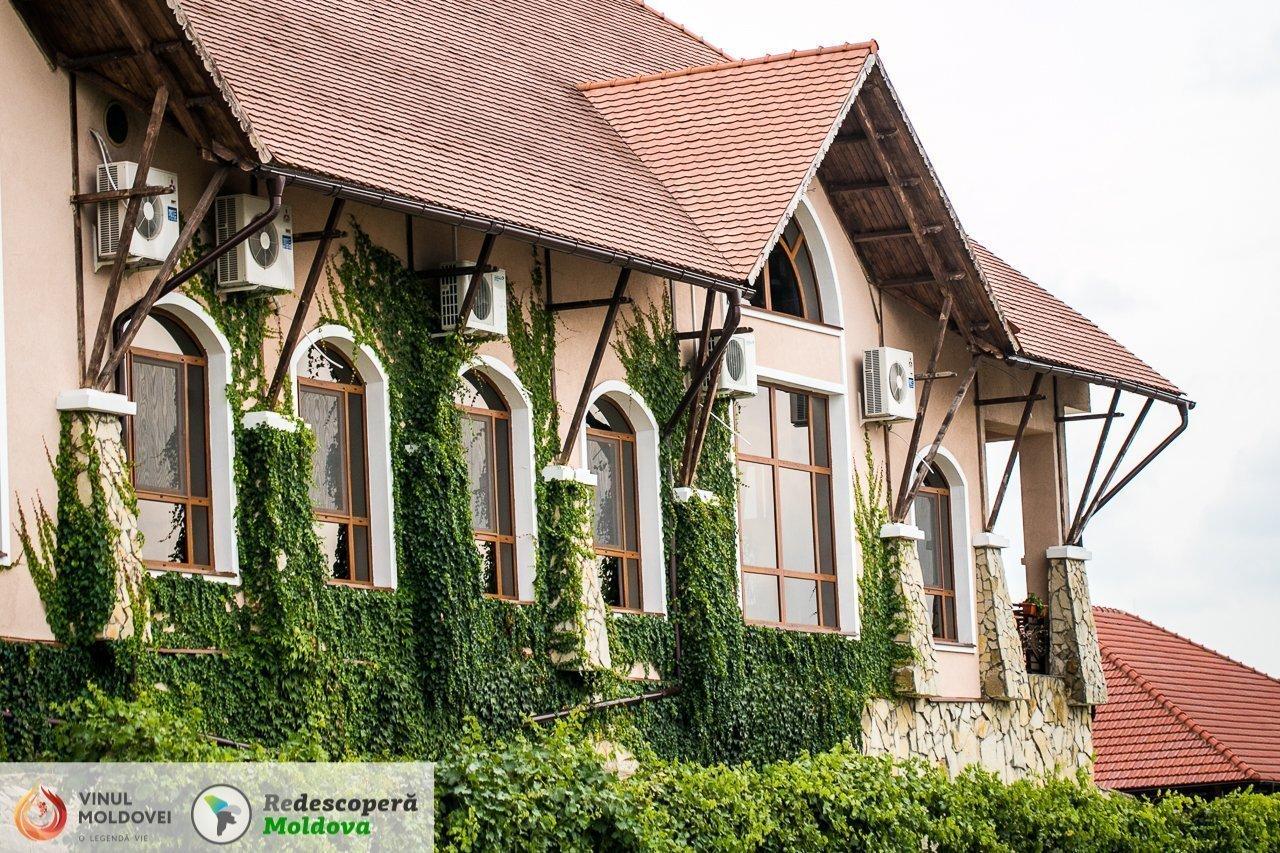 drumul-vinului-day2-minis-terrios-chateau-vartely-30