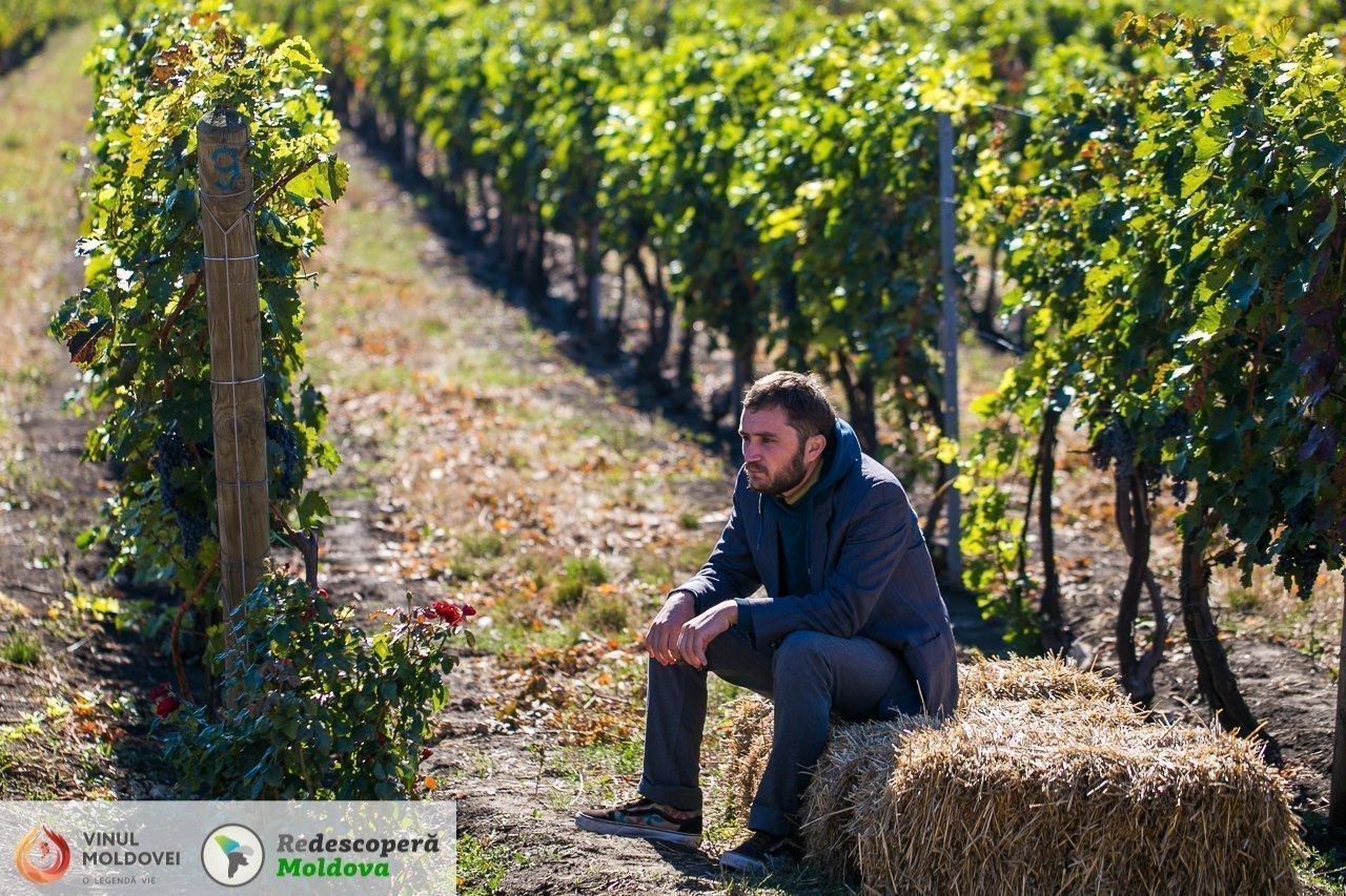 drumul-vinului-day4-et-cetera-salcuta-11