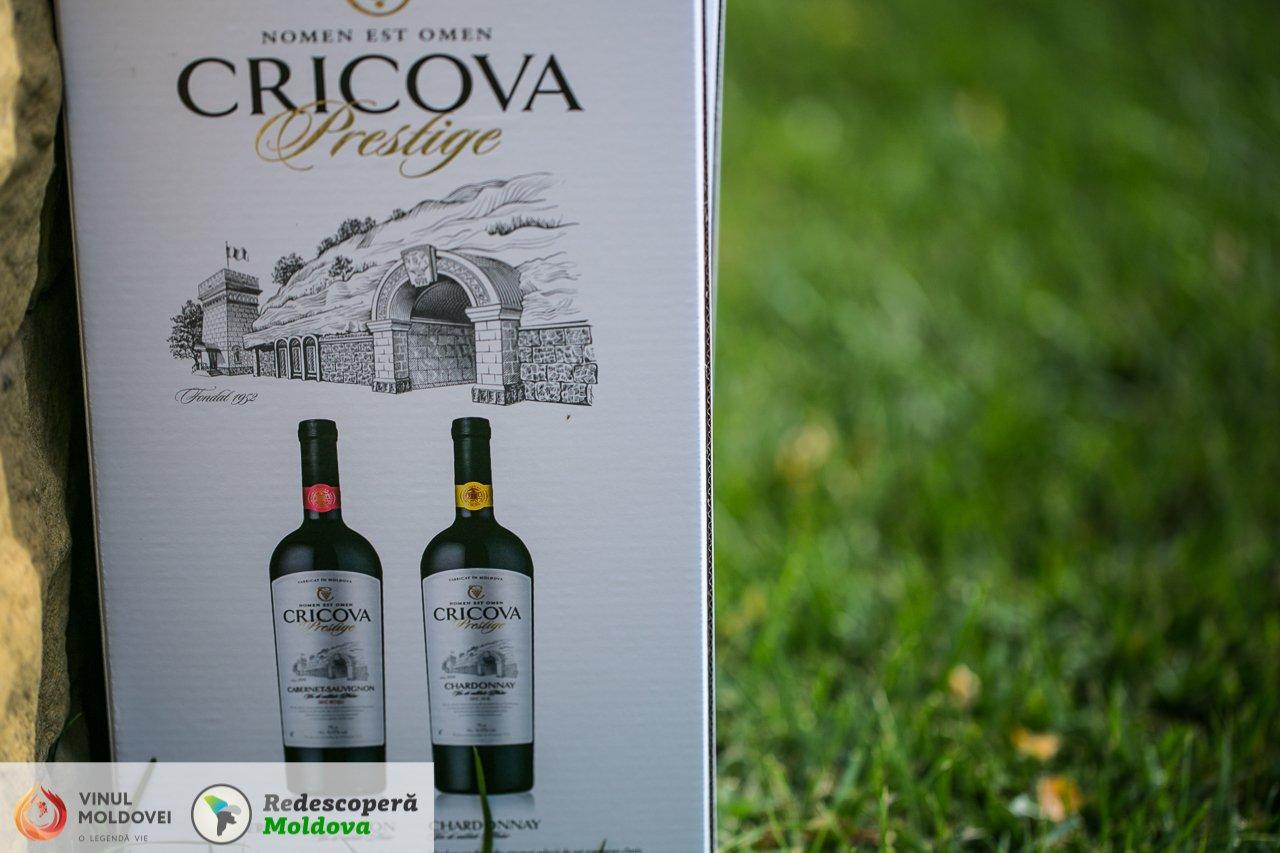 drumul-vinului-day6-cricova-94