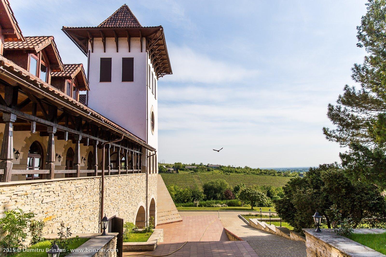 Purcari Estate - Overview