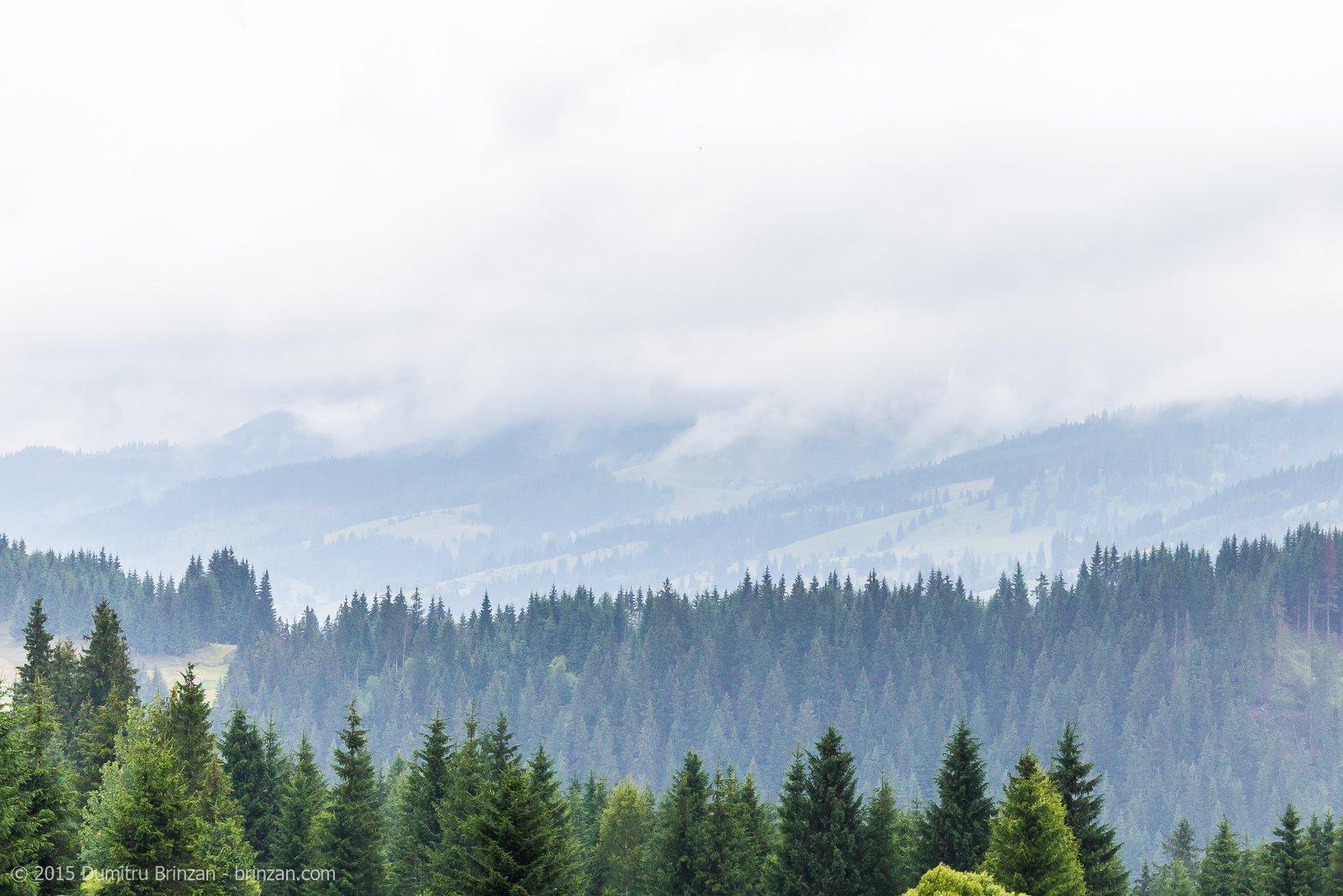 vatra-dornei-2015-domeniul-dornei-5