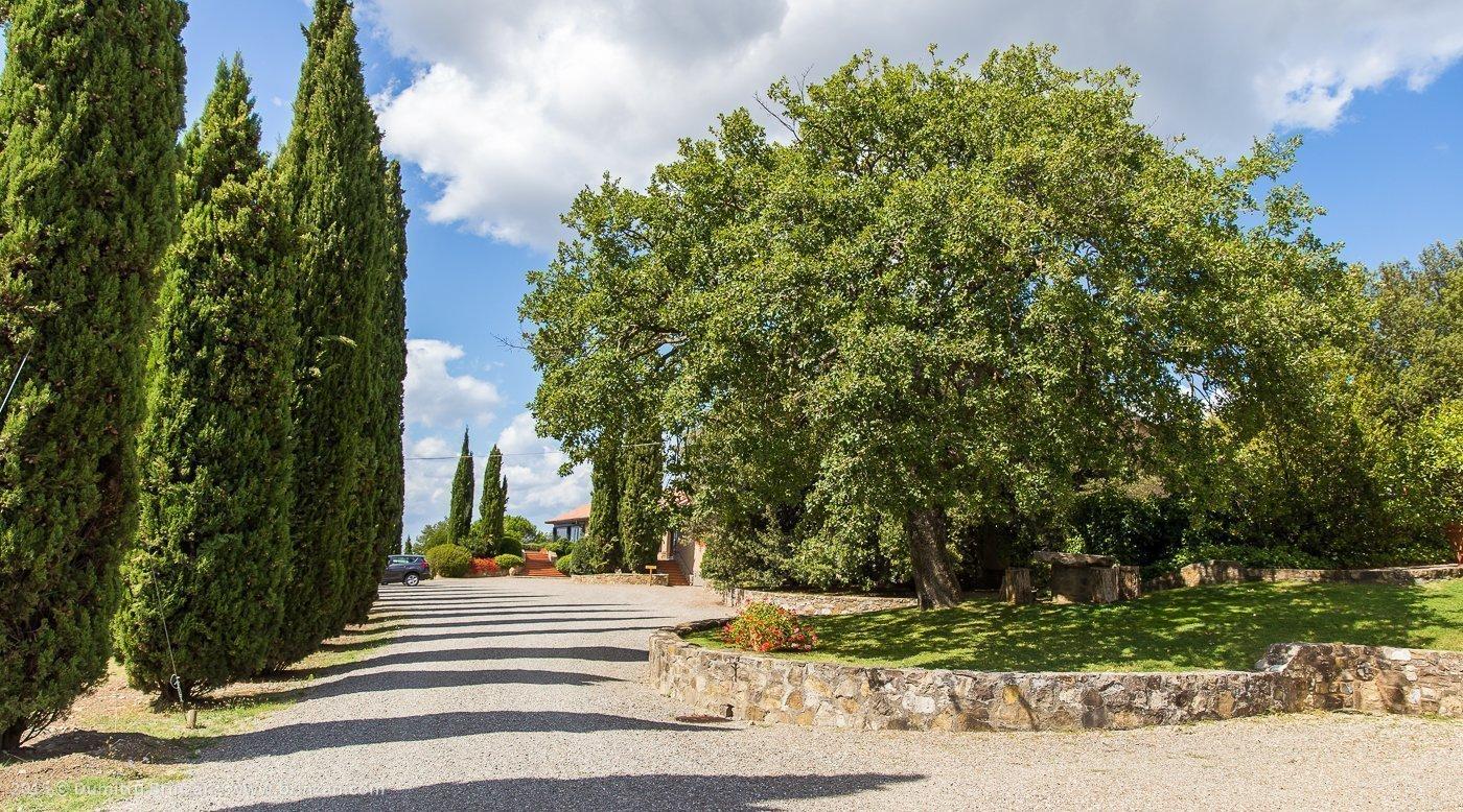 2015-poggio-antico-tuscany-italy-1