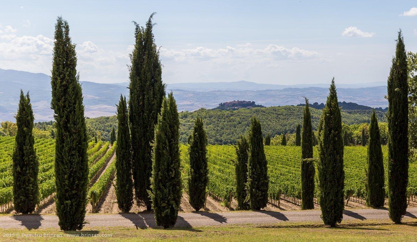 2015-poggio-antico-tuscany-italy-22