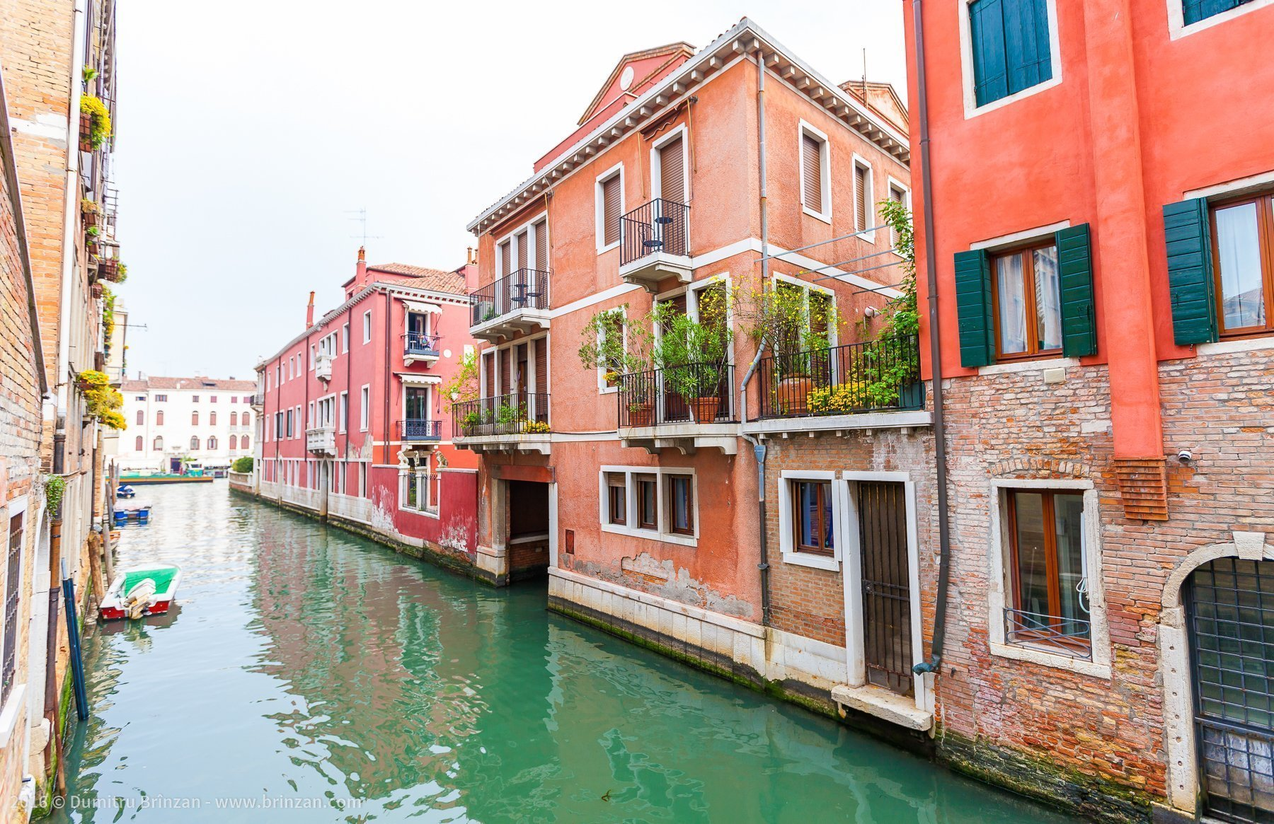 In Venice there are only flower pots - no trees, no grass.