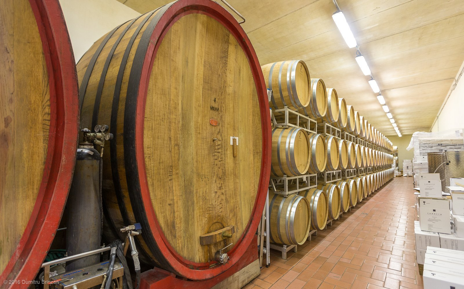 2016-canneto-winery-montepulciano-13
