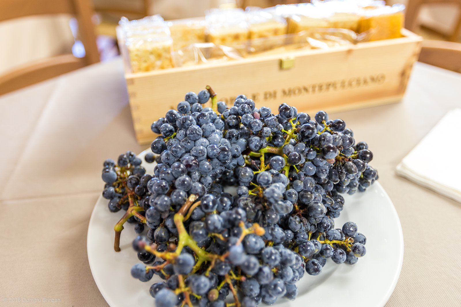 2016-canneto-winery-montepulciano-25