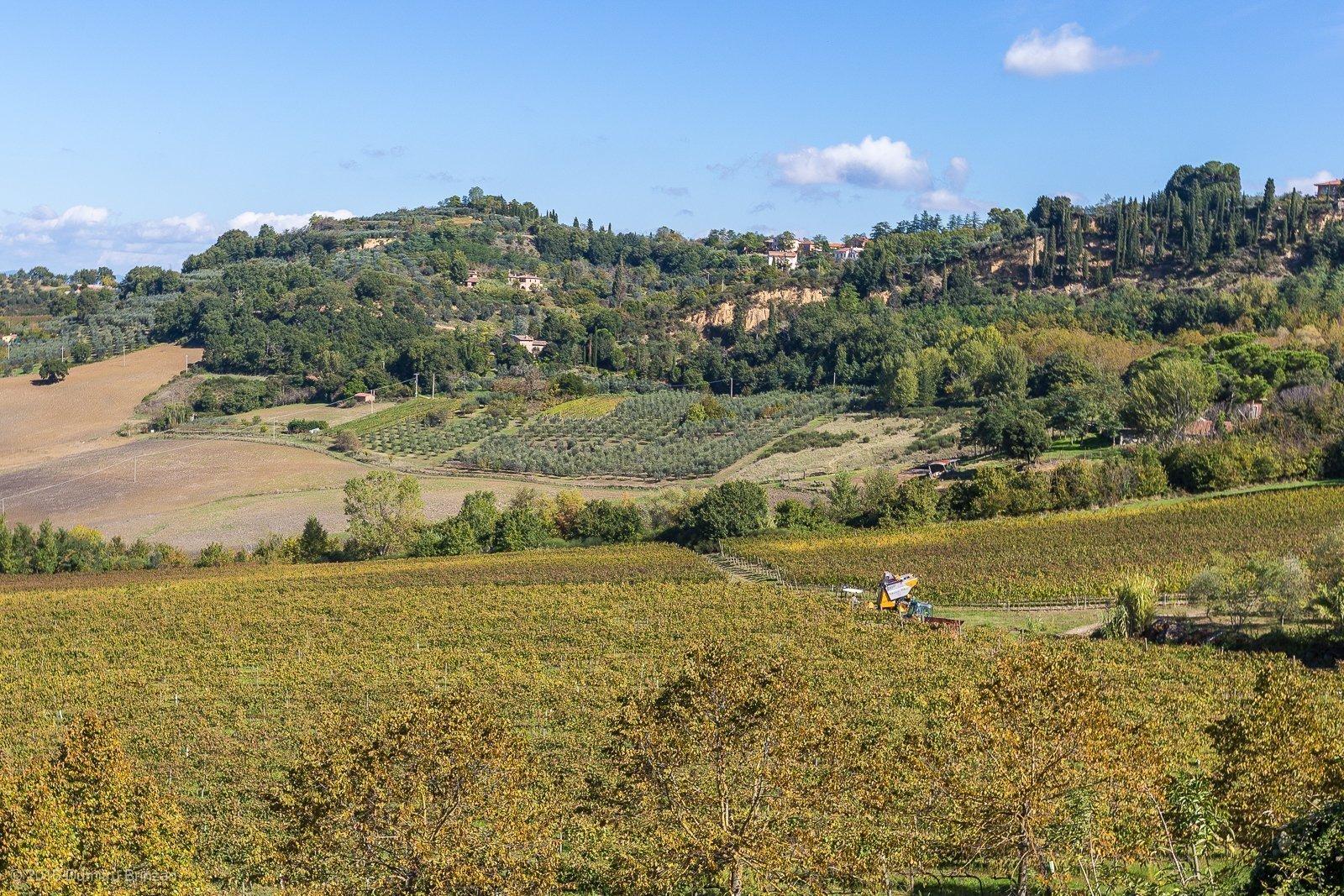 2016-canneto-winery-montepulciano-27