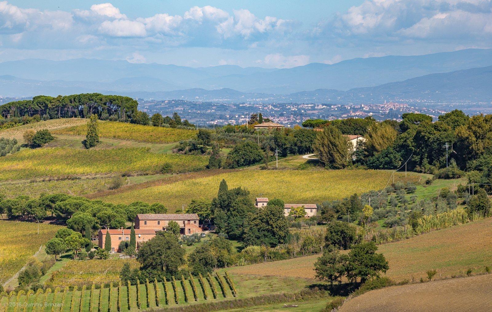 2016-canneto-winery-montepulciano-36