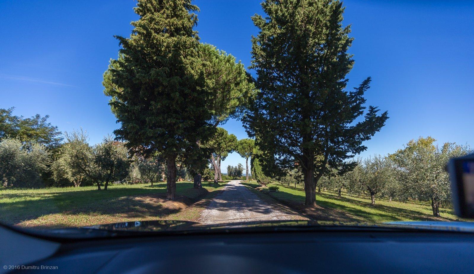 2016-canneto-winery-montepulciano-4