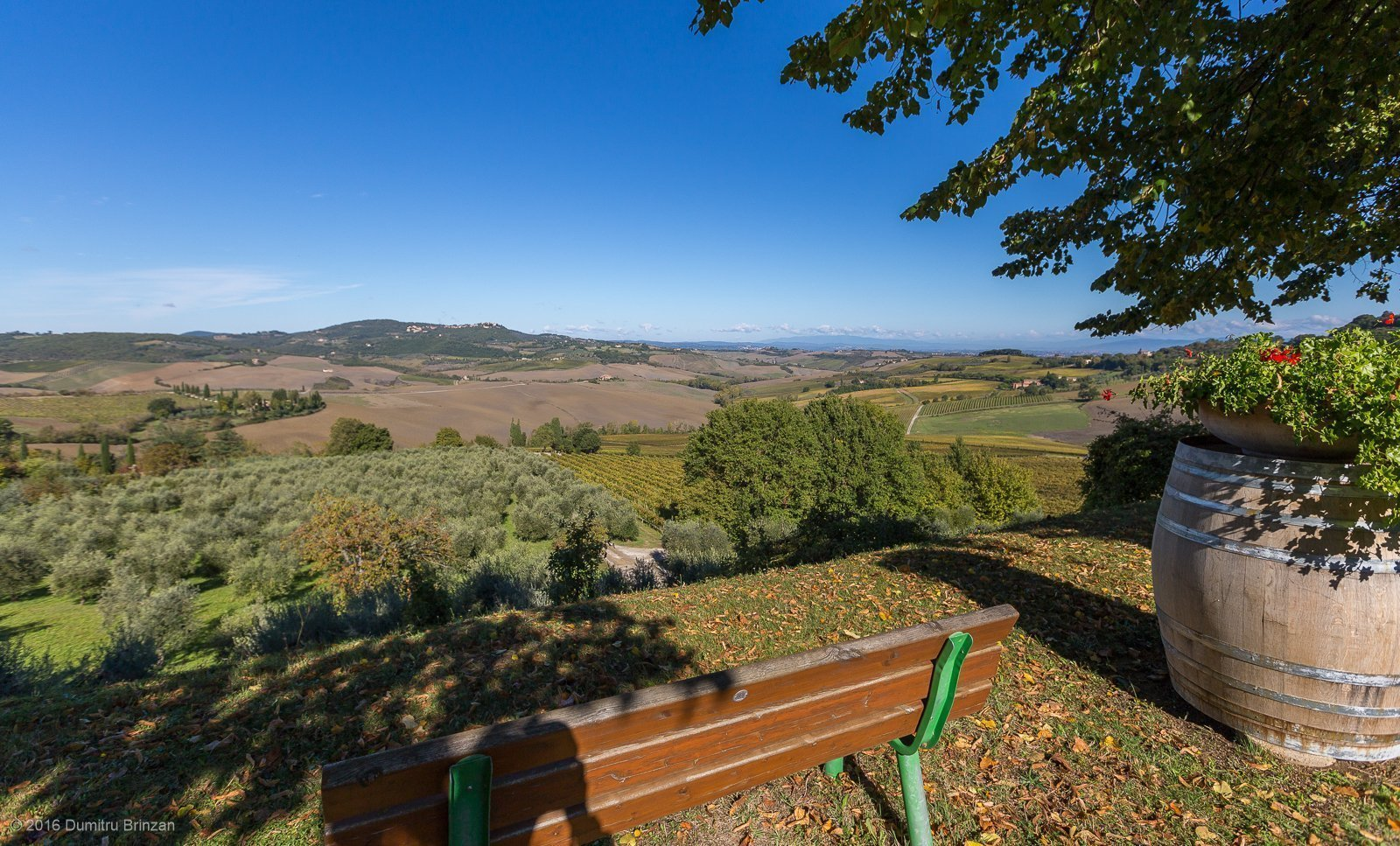 2016-canneto-winery-montepulciano-7