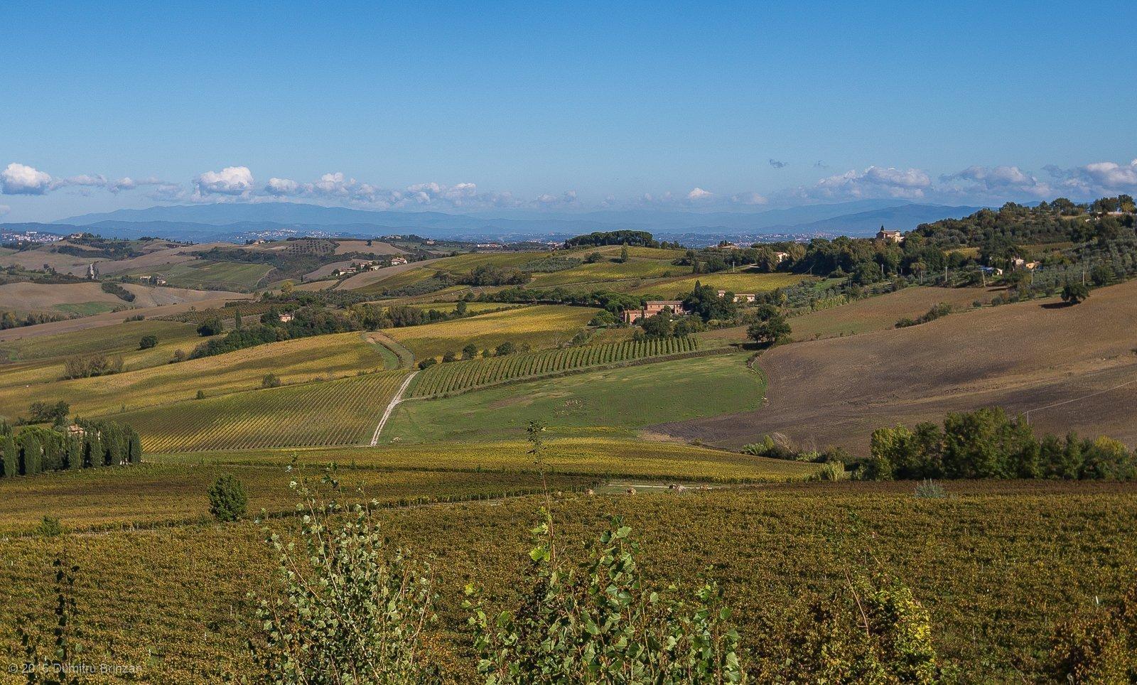 2016-canneto-winery-montepulciano-9
