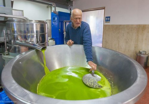 Thumbnail for How Olive Oil is Pressed: A Tour of Oliviera Sant'Andrea in Sinalunga, Italy