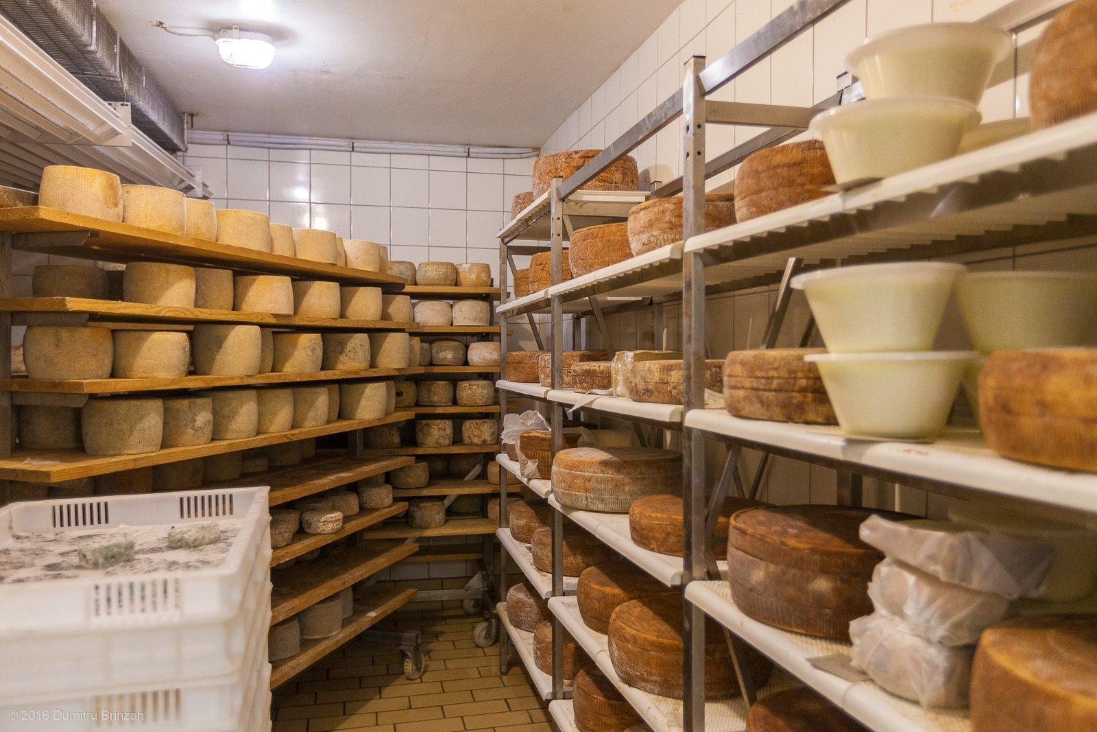 2016-podere-il-casale-pienza-15-cheese-fridge