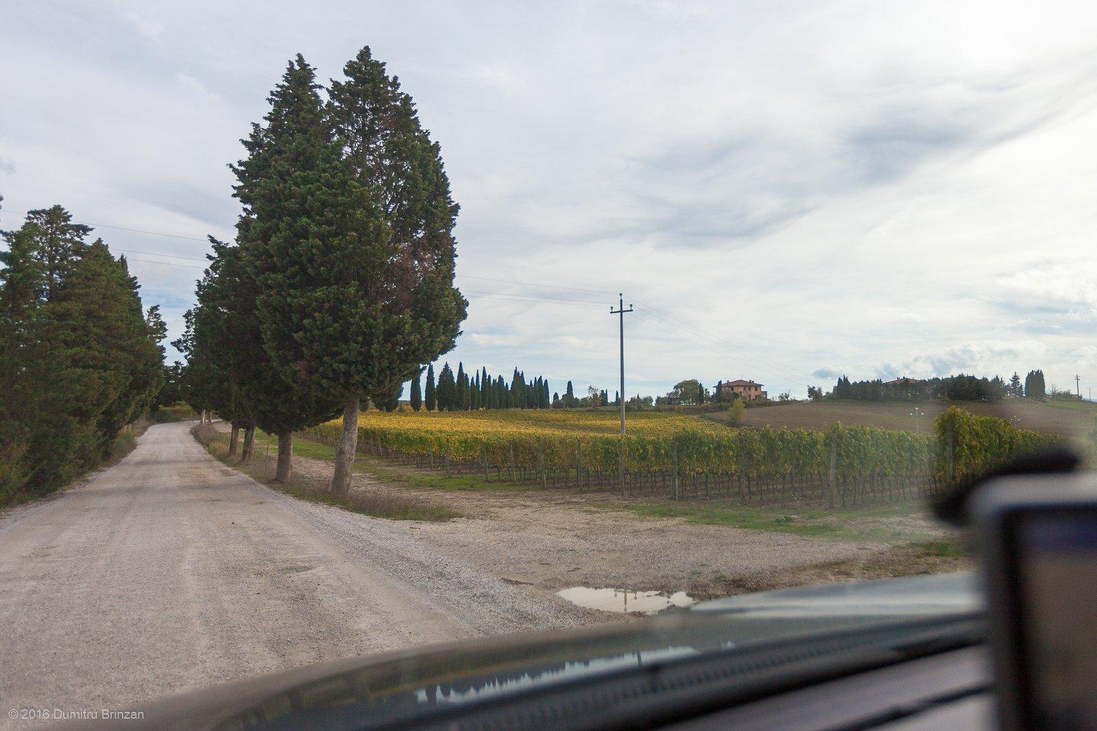 2016-podere-il-casale-pienza-3