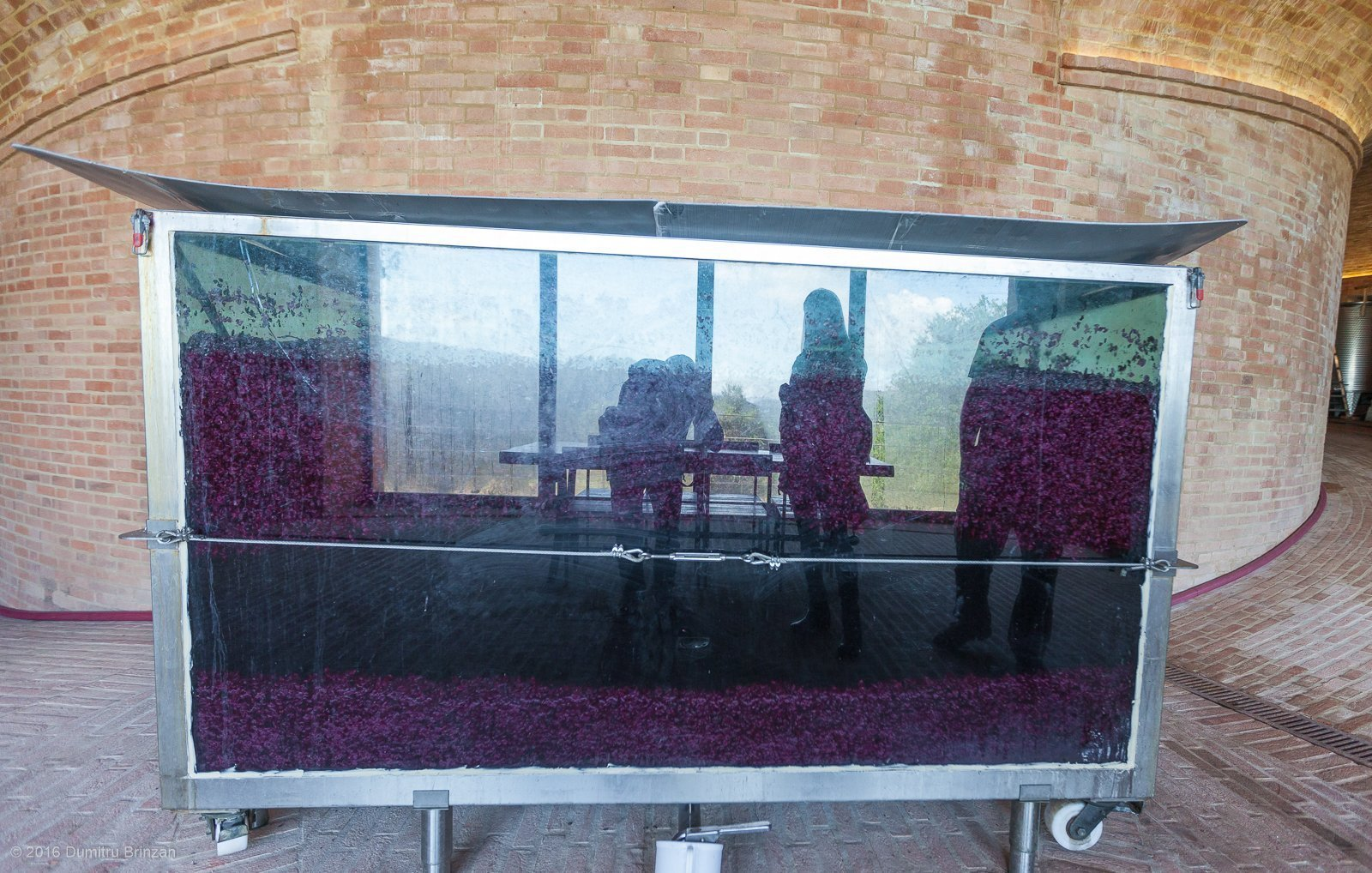 2016-podere-le-ripi-winery-montalcino-17