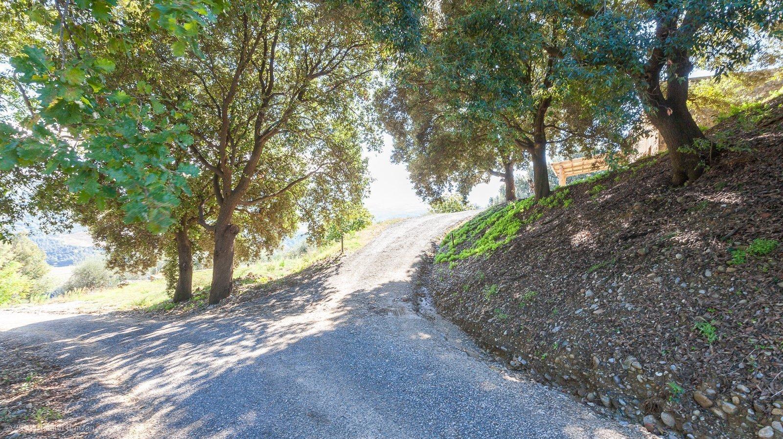 2016-podere-le-ripi-winery-montalcino-4