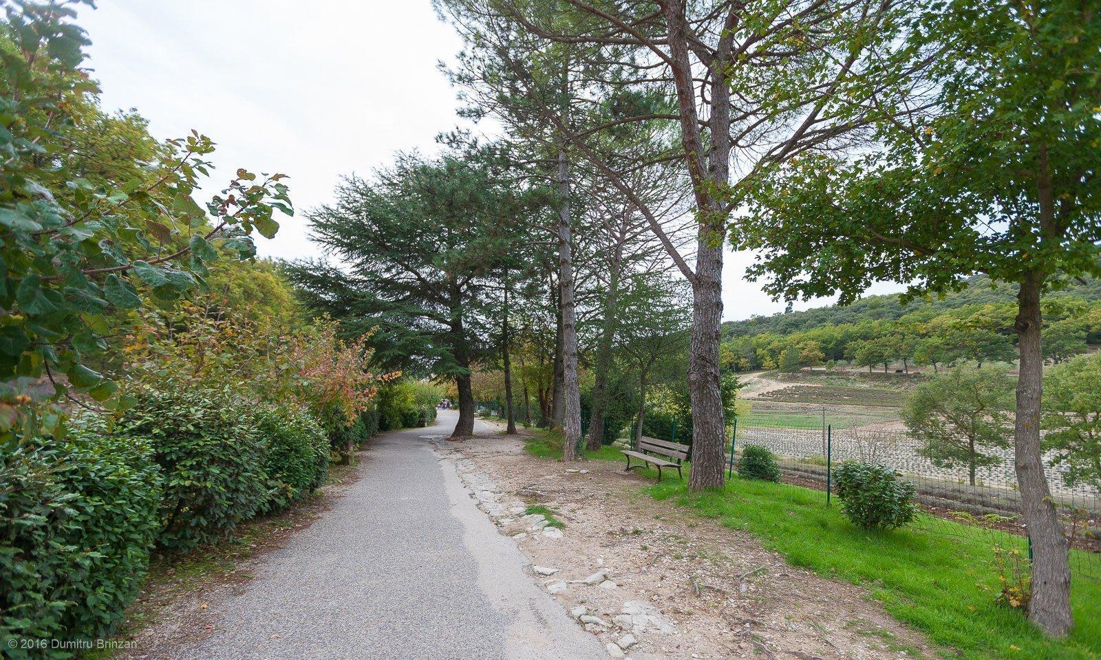 senanque-abbey-provence-france-3