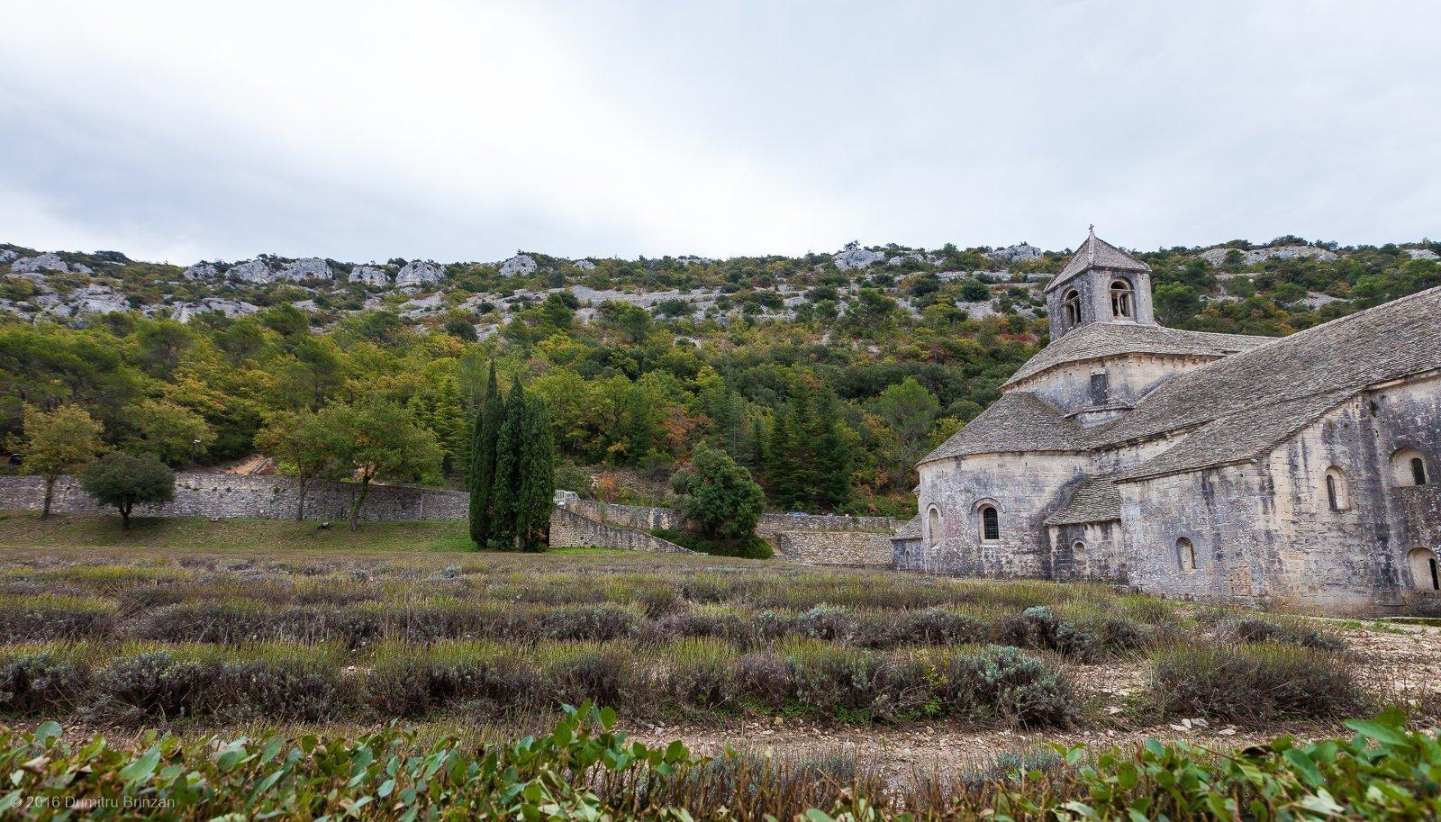 senanque-abbey-provence-france-7