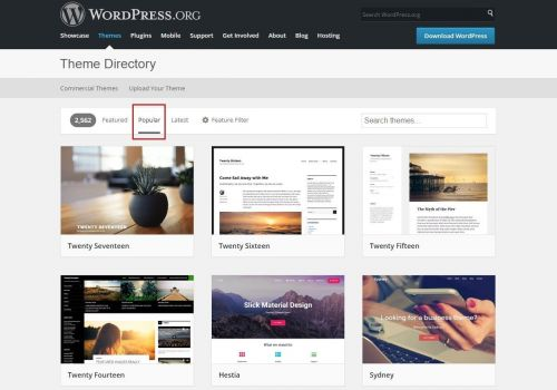 Thumbnail for Inside WordPress.org Theme Review Team: Money, Abuse and Inconsistent Leadership