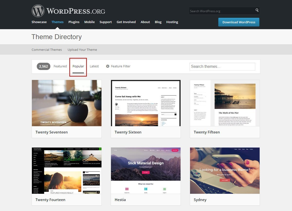 Inside WordPress org Theme Review Team: Money, Abuse and